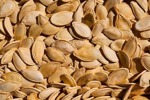 Propiedades Medicinales de las Semillas de Zapallo 10 Beneficios que Debes Conocerz 1