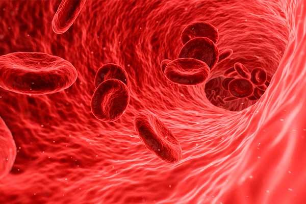 beneficios-de-la-vitamina-b6-sangre