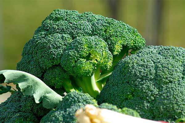 alimentacion-para-amamantar-bebe-brocoli