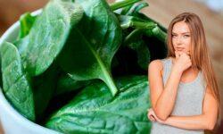 alimentos-naturales-para-tener-energia