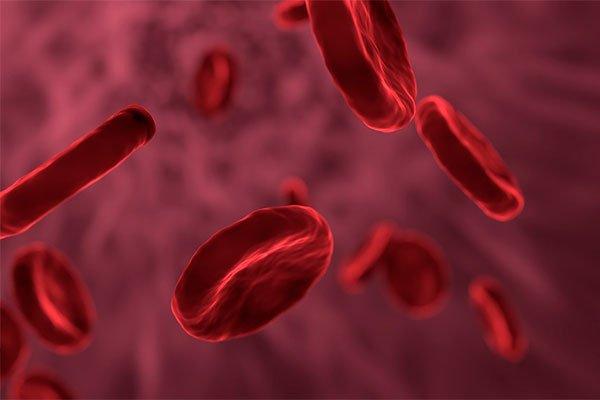 beneficios-de-la-remolacha-para-la-sangre